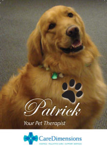 Care Dimensions pet therapy dog Patrick